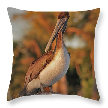 Throw Pillow featuring the photograph 9- Brown Pelican by Joseph Keane