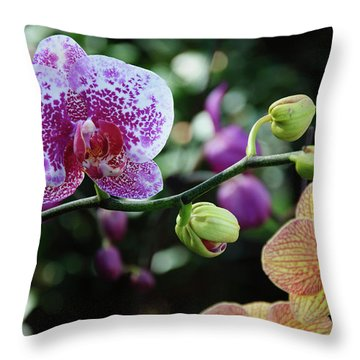 Butterfly Orchid Flowers Throw Pillow
