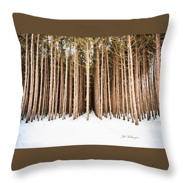 Michigan Winter Throw Pillow