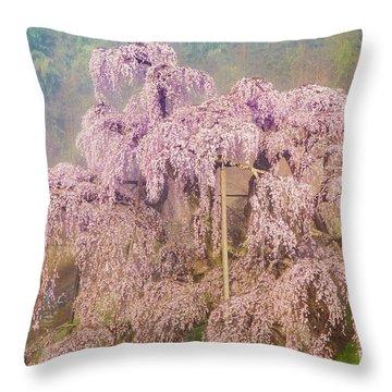 Throw Pillow featuring the photograph Miharu Takizakura Weeping Cherry09 by Tatsuya Atarashi