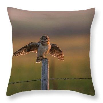 A Balancing Act Throw Pillow