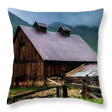 Throw Pillow featuring the photograph A Barn In Crested Butte by John De Bord