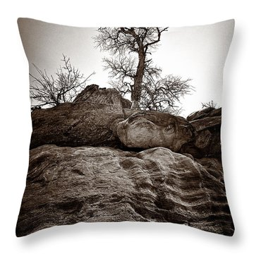 A Barren Perch - Sepia Throw Pillow by Christopher Holmes