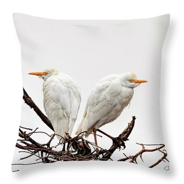 A Basket Of Anger Throw Pillow by Cyndy Doty