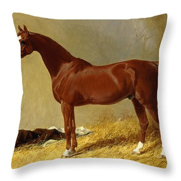 A Bay Racehorse In A Stall, 1843 Throw Pillow