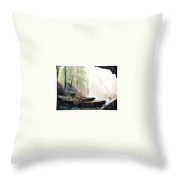 A Bears View Throw Pillow by Gail Kirtz