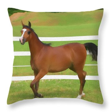 A Beautiful Arabian Filly In The Pasture. Throw Pillow