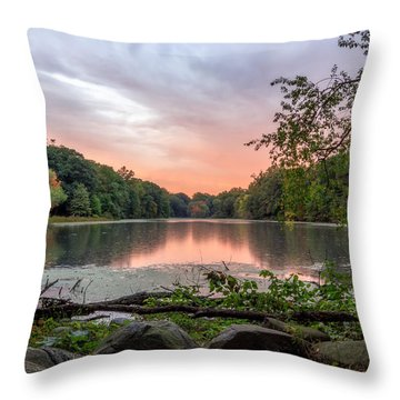 A Beautiful Drizzle  Throw Pillow