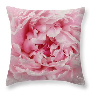 A Beauty At Close Range Throw Pillow