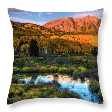 Throw Pillow featuring the photograph A Beckwith Morning by John De Bord