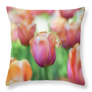 A Bed Of Tulips Is A Feast For The Eyes. Throw Pillow