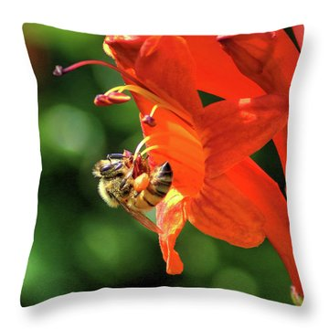 A Bee's Life Throw Pillow