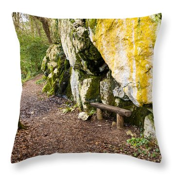 A Bench In The Woods Throw Pillow by Rae Tucker