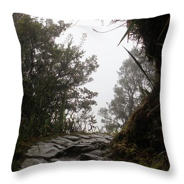 A Bend In The Path Throw Pillow