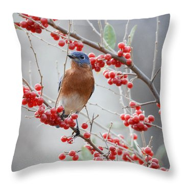 A Berry Good Morning Throw Pillow by Amy Porter
