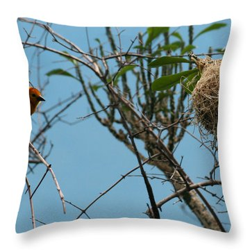 A Bird In 3d Throw Pillow