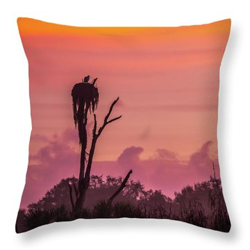 A Birdie Morning Throw Pillow