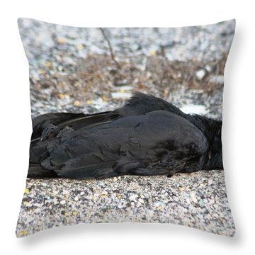 A Birds Eye View Of   The End Throw Pillow