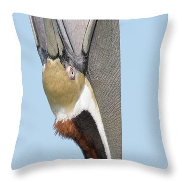 A Bit Of A Stretch Throw Pillow by Jim Gray