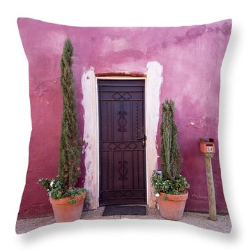 Throw Pillow featuring the photograph A Bit Of Brightness Down The Lane by Linda Lees