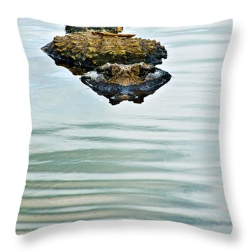A Bit Of Curiosity Throw Pillow by Christopher Holmes