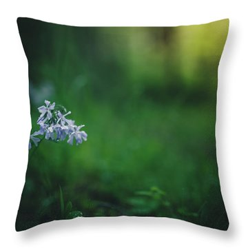Throw Pillow featuring the photograph A Bit Of Forest Magic by Shane Holsclaw