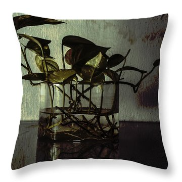 A Bit Of Grunge Throw Pillow by Rajiv Chopra