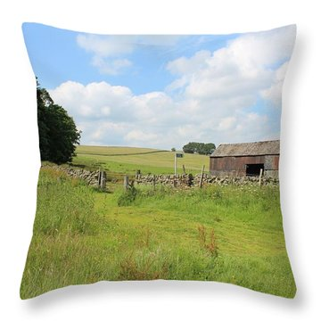A Bit Ramshackle Throw Pillow