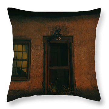 A Black Cat's Night Throw Pillow by David Lee Thompson