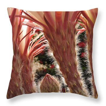 A Blooms Secret Throw Pillow