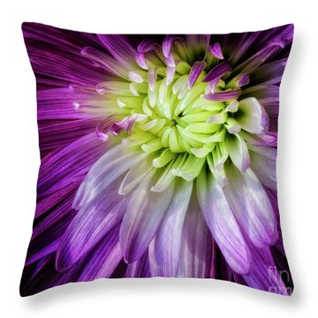 A Bloom's Unfolding Throw Pillow by Madonna Martin