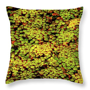 A Botanical Mosaic Throw Pillow