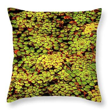 A Botanical Mosaic Throw Pillow