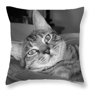 A Bowl Of Ginger Throw Pillow by Maria Bonnier-Perez
