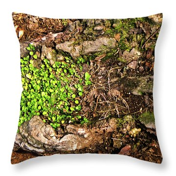 A Bowl Of Greens Throw Pillow