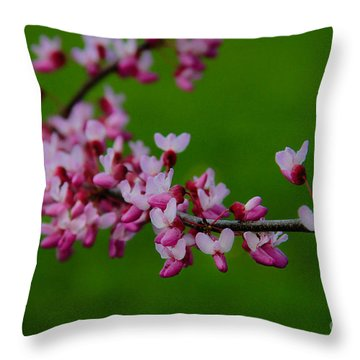 A Branch Of Spring Throw Pillow