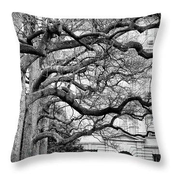 A Branch Salute Throw Pillow