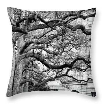A Branch Salute Throw Pillow