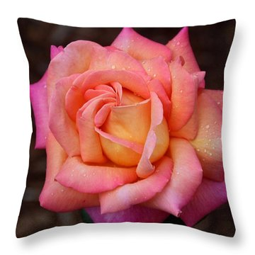 A Breath From Sarasota Throw Pillow by Michiale Schneider