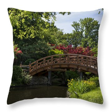 A Bridge To Cross Throw Pillow
