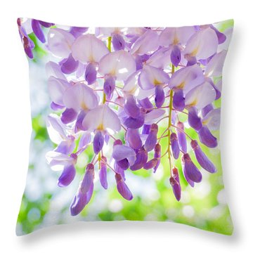 A Bright Sunshiny Day  Throw Pillow