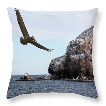 A Brown Pelican Does A Flyby Of A Guano Covered Desert Island  Throw Pillow