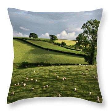A Bucolic Evening Throw Pillow