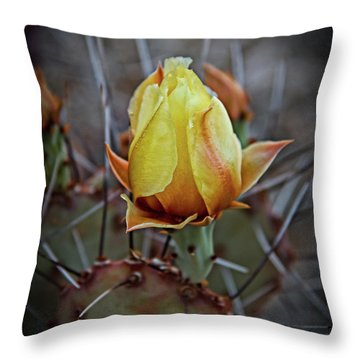 Throw Pillow featuring the photograph A Bud In The Thorns by Robert Bales