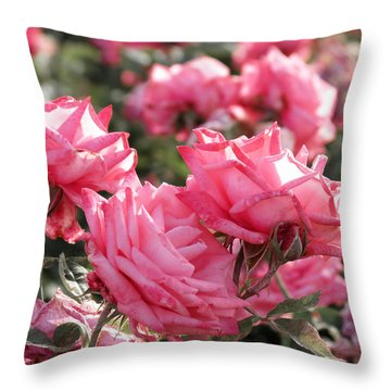 Throw Pillow featuring the photograph A Bunch Of Pink by Laurel Powell