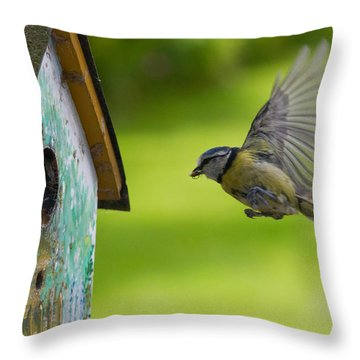 A Busy Blue Tit Mum Throw Pillow