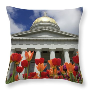 A Capitol Day Throw Pillow