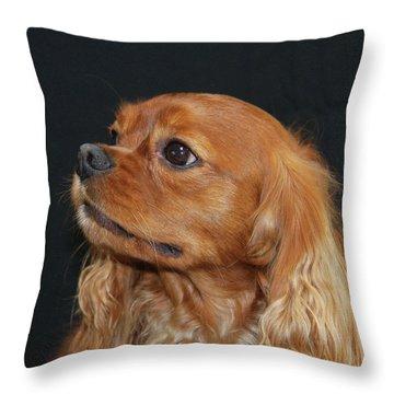 A Caramel Look Throw Pillow by Daphne Sampson