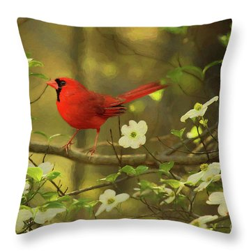 Throw Pillow featuring the photograph A Cardinal And His Dogwood by Darren Fisher