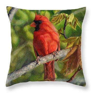 A Cardinal Named Carl Throw Pillow
